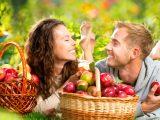 Развенчивая мифы. 12 причин не становиться вегетарианцем