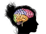Ожирение ускоряет старение мозга