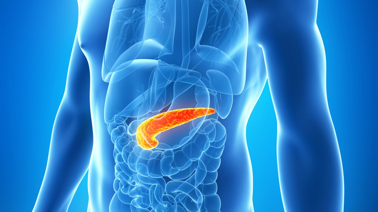 Хронический панкреатит, диагностика, симптомы, диета при панкреатите, питание при панкреатите, лечение